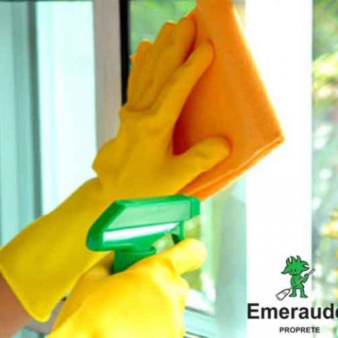 emeraude-proprete-vitres