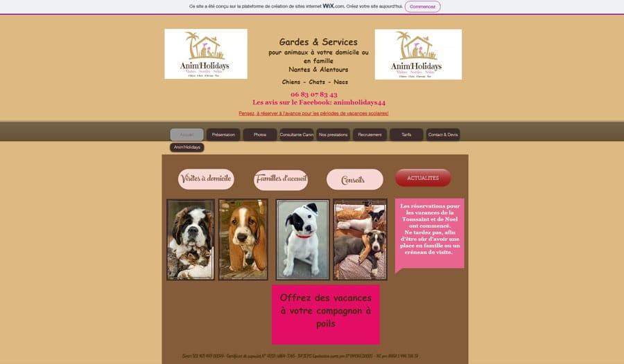 Le site Wix avant refonte par Goodi web
